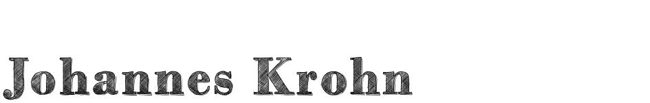 Johannes Krohn Portfolio